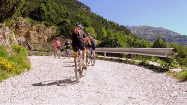 Le tourisme à vélo, une carte à jouer entre le slow & le green tourisme ?